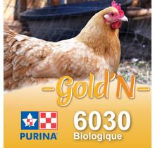 6030 - GOLD'N Layena Biologique pour ponte