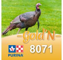 8071D - GOLD'N Dinde croissance comprimés