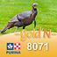 Cargill-Purina 8071D - GOLD'N Dinde croissance comprimés