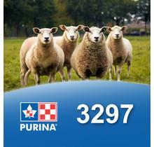 3297 - Brebina - Mouton