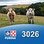 Cargill-Purina 3026 - Show chow 14% grossier