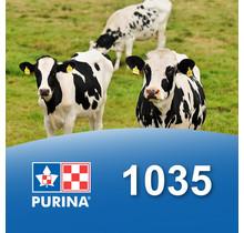 1035  - Extruveau Immunitek