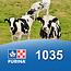 Cargill-Purina 1035  - Extruveau Immunitek