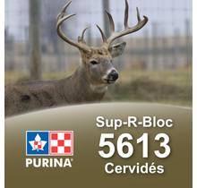 Sup-R-Block Cervidés nutrition complète - Purina-Cargill