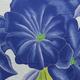 Angela Tisseraud CARMEN BLUE: HAND PAINTED PAREO