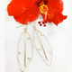 Lehualani EARRINGS: BANANA LEAVES (GOLD FILL)