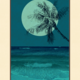 Aloha Posters PACIFIC PALMS IV, 11X14 MATTED PRINT