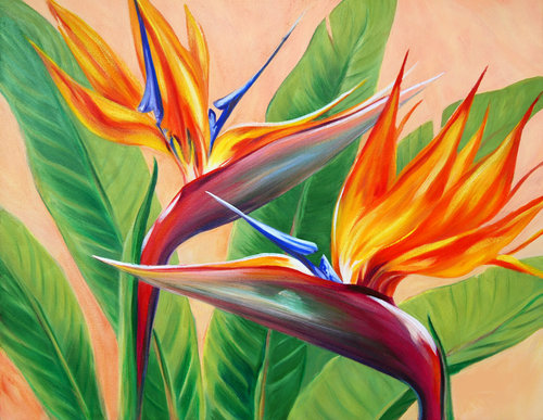 "Carol Collette Tropical Flirtation, 11""x14"" Gallery Wrap Giclee on Canvas"