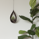 Savvie Studio AIR PLANT HANGER-TEARDROP WALNUT