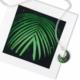 Foterra Jewelry GREEN PALM MINI NECKLACE