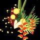 Punky Aloha Floral I