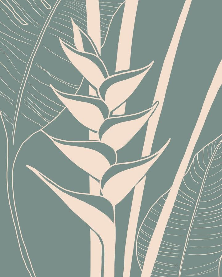 Bethany Strickland Heliconia, 11x14 Matted Print