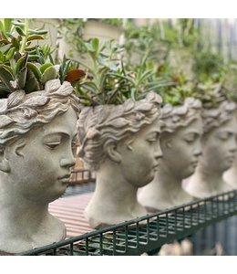 Planter, Succulent  Goddess Head