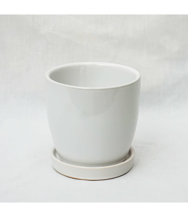 """Pot, White 4.5"""" with Saucer"""