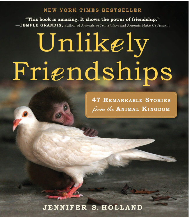 Book, Unlikely Friendships