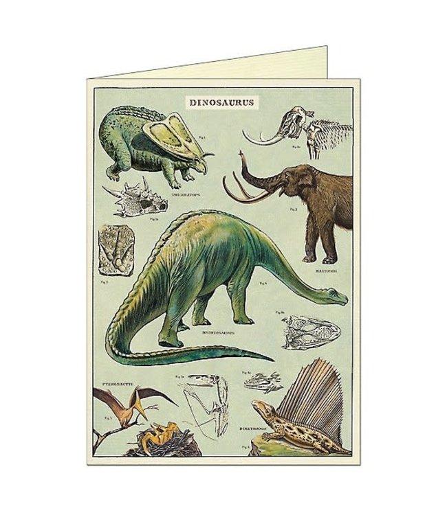 Card & Env, Dinosaurs