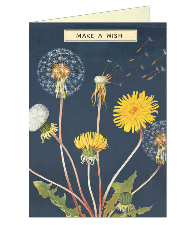 Card & Env, Make a Wish