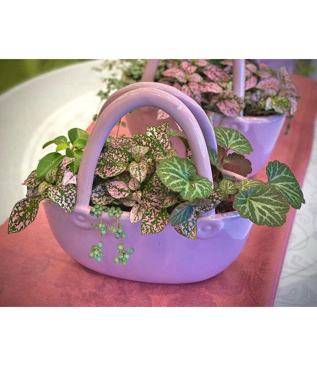 Purse, Plant Arrangement