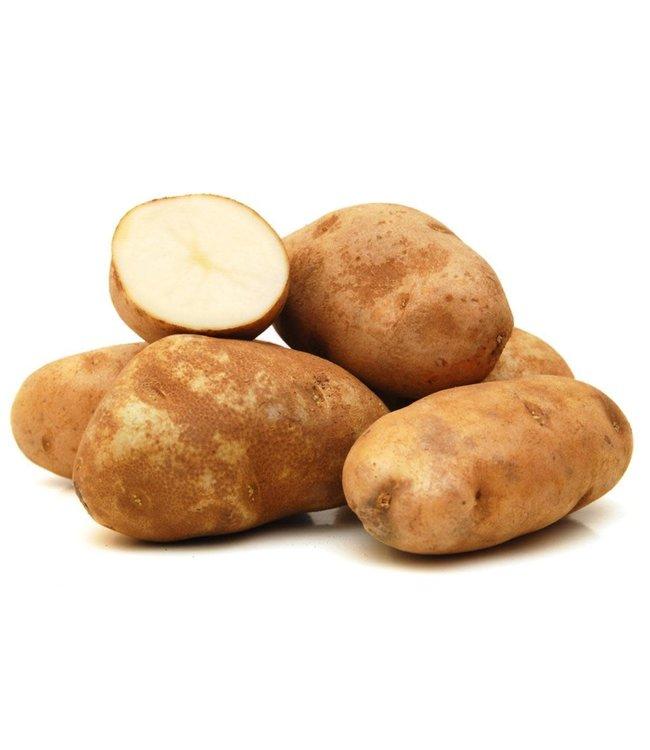Seed Potato, Russet Burbank 5lb