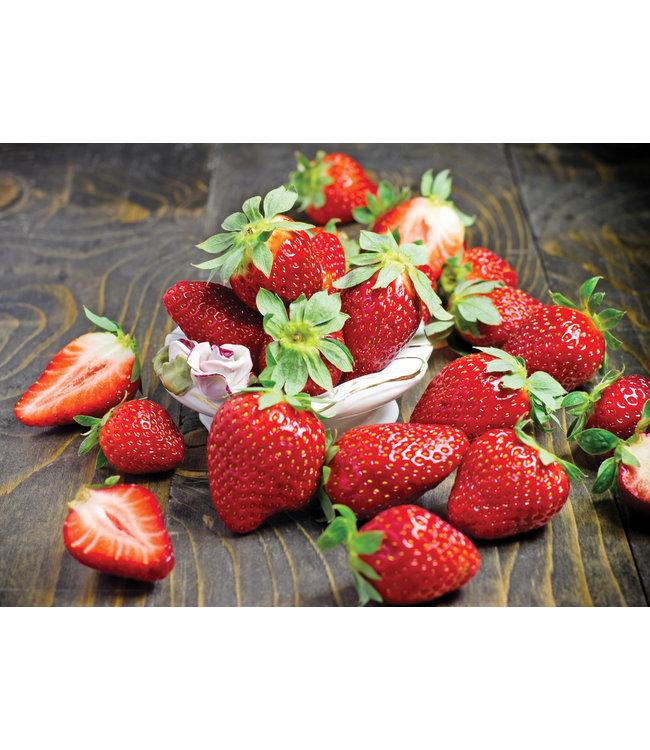 Strawberry, For Laramie 4 in