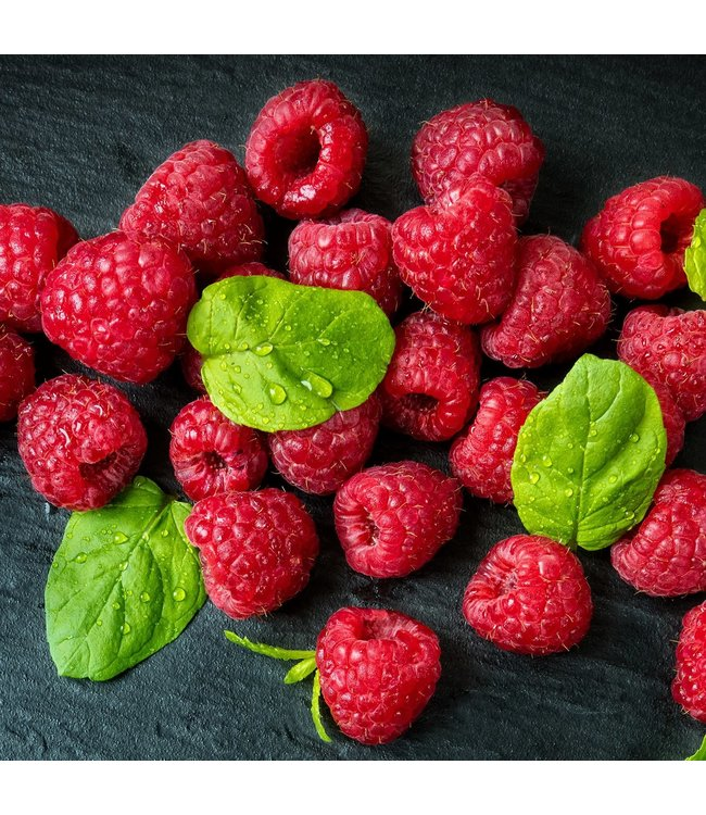 Raspberry, Boyne #1