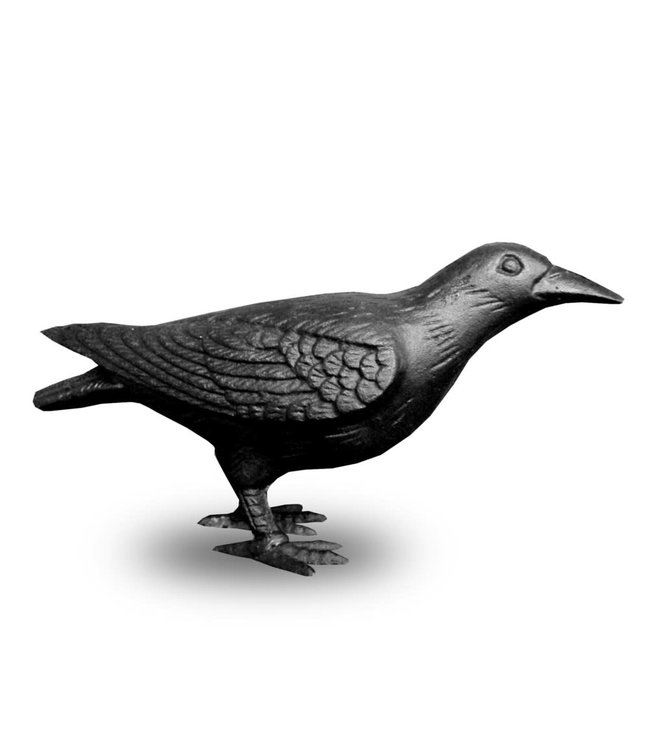 Crow, Cast