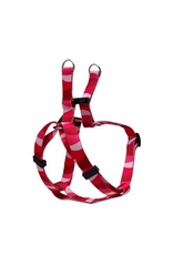 (D) Step in harness S wild stripe
