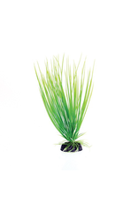 UNDERWATER TREASURES (W) UT PP GREEN HAIRGRASS 8IN