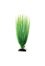 UNDERWATER TREASURES UT PP GREEN HAIRGRASS 12IN