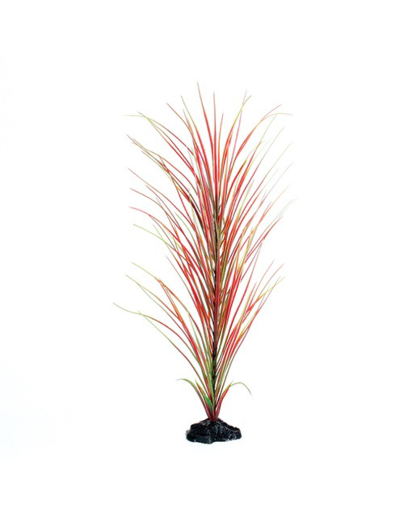 UNDERWATER TREASURES UT PP RED/GREEN HAIRGRASS 20IN