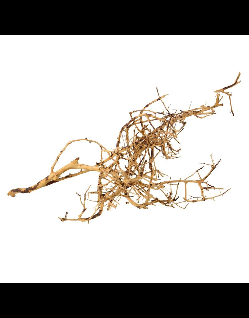 UNDERWATER TREASURES Bird nest Wood - Small