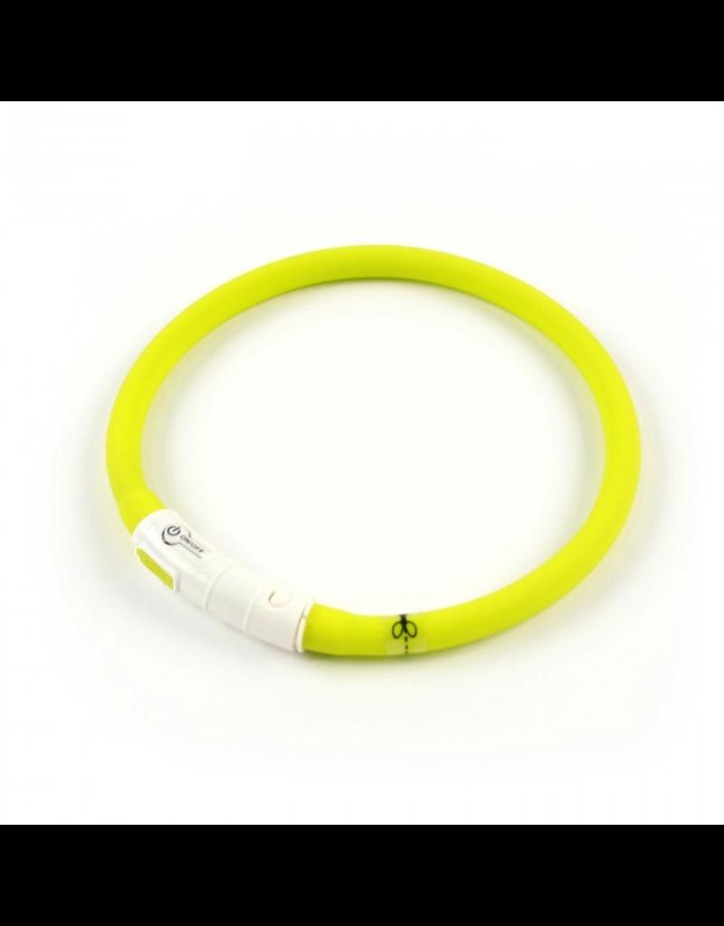 AFP (D) AFP K-NITE LED Light Collar Sm