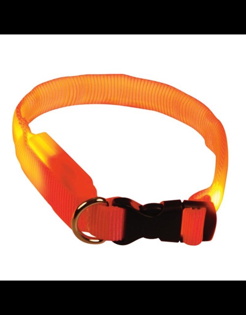 (D) Clip n' Glow LED Collar - Orange - Small