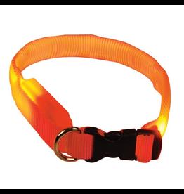 (D) Clip n' Glow LED Collar - Orange - Medium
