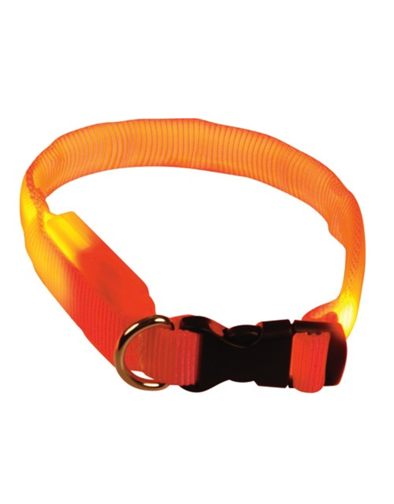(D) Clip n' Glow LED Collar - Orange - Medium