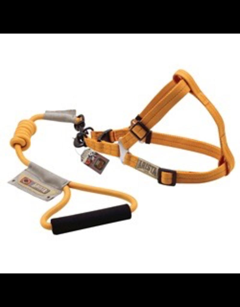 ARISTA (D) Arista Round Harness & Leash Set - Medium - Orange
