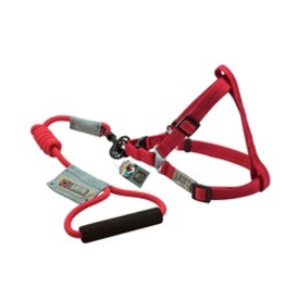 ARISTA (D) Arista Round Harness & Leash Set - Large - Red