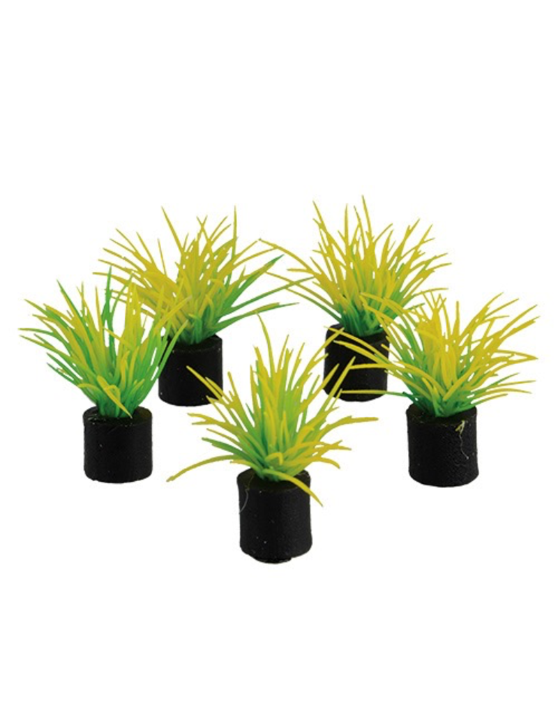 "UNDERWATER TREASURES Mini Plant - Spring Grass - 1.25"" - 5 pk"