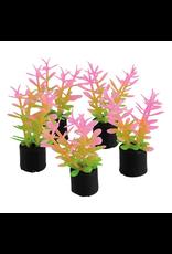 "UNDERWATER TREASURES Mini Plant - Pink and Green - 1.5"" - 5 pk"