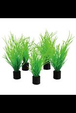 "UNDERWATER TREASURES Mini Plant - Bog Grass - 3"" - 5 pk"
