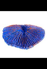UNDERWATER TREASURES Plate Coral - Blue - Mini