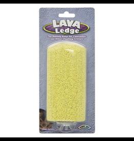 KAYTEE Lava Ledge - Assorted