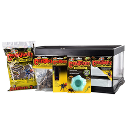 Zoo Med Creatures Creature Den Low Profile Starter Kit - 6 gal
