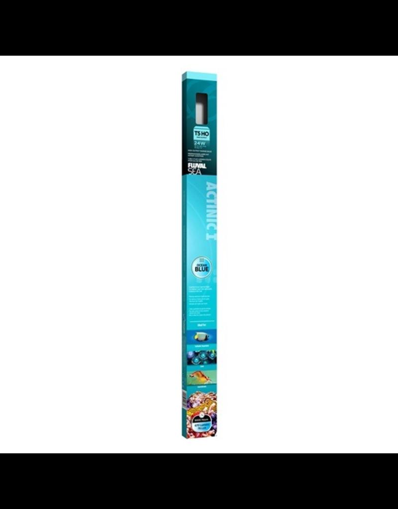 FLUVAL (P) Fluval Sea T5 HO Actinic Aquarium Bulb - 24 W