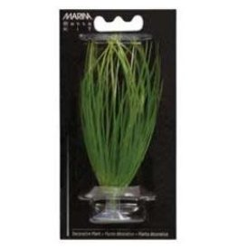 MARINA MA Hairgrass 5in W/Suction Cup-V