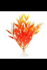 MARINA MA Betta Fire Grass,12.7cm (5in)