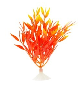 MARINA (D) MA Betta Fire Grass,12.7cm (5in)