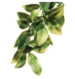 EXO TERRA Exo Terra Shrub Plant Small Mandarin-V