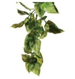 EXO TERRA Exo Terra Shrub Plant Med.Ampallo-V