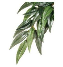 EXO TERRA Exo Terra Silk Plant Lrg Ruscus-V